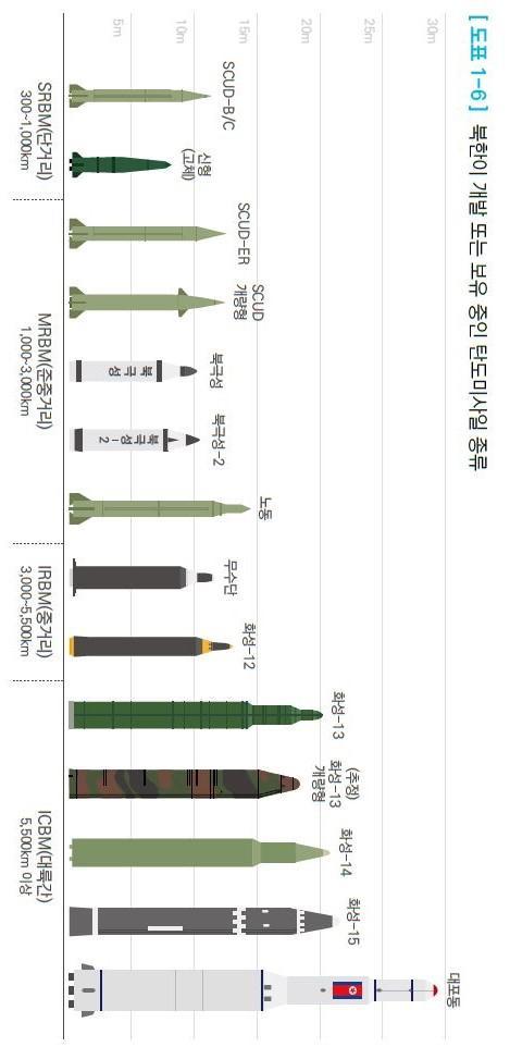 북한 미사일보유.jpg