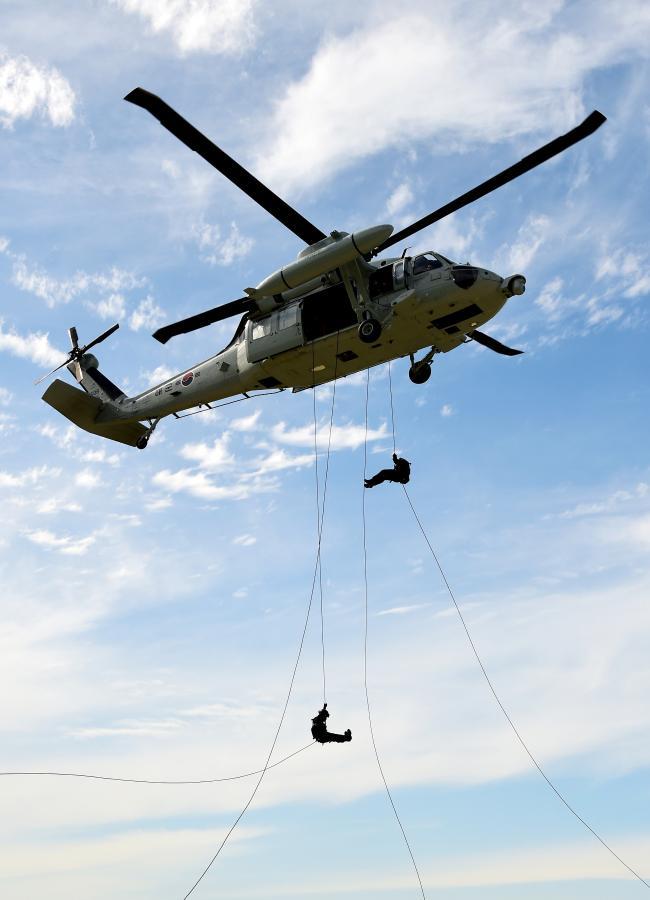 헬기레펠.jpg