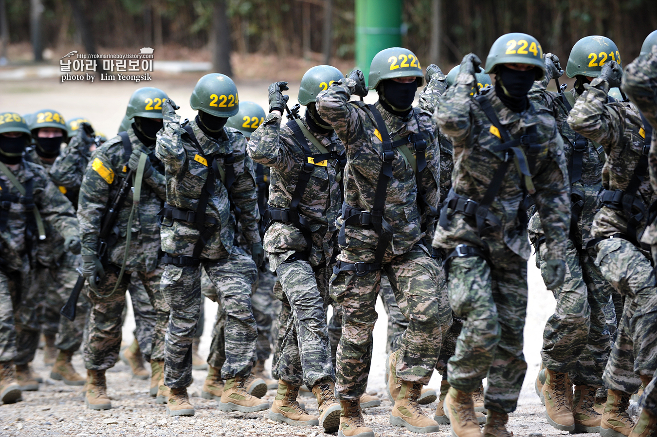 해병대 신병 1255기 2교육대 유격기초 2_7876.jpg